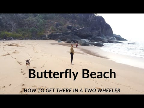 How to get to butterfly beach in a car/two wheeler   save the boat money   dji mavic mini