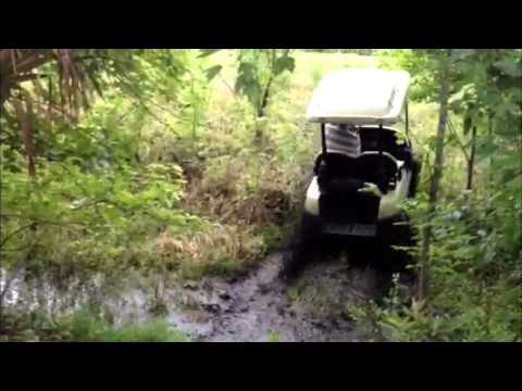 Electric 4-wheel drive golf cart in the swamp - performance carts